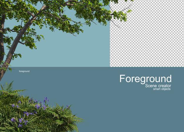 树的三维渲染前景隔离